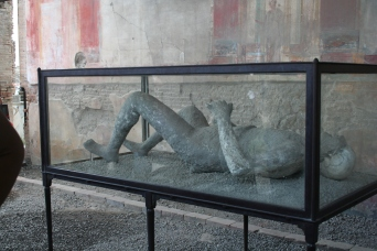 pompeii-body-in-case-from-top-left
