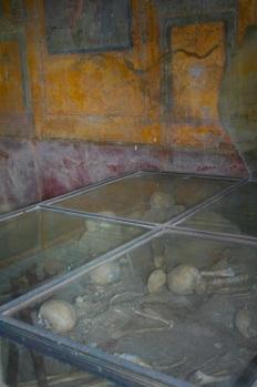Pompeii bones
