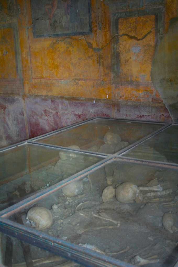 pompeii-bones-in-case