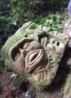 Amazon, Ecuador